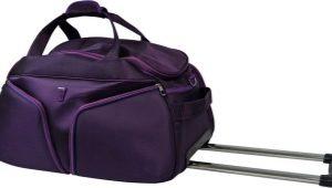 Bolsa con ruedas con asa retráctil: bolsa de trolley, bolsa de maleta, hockey, plegable, Dakine
