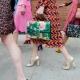 Bolsas de Gucci 2019
